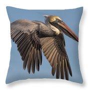 Beautiful Brown Pelican Throw Pillow
