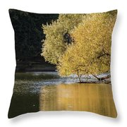 Beautiful Colorful Landscape Image Of Golden Autumn Fall Trees R Throw Pillow