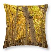 Beautiful Fall Color In California Throw Pillow