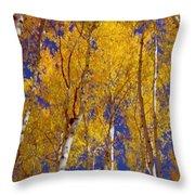 Beautiful Fall Season Nature Renews Itself  Theme Green Trees Reaching For The Sky  Save The Environ Throw Pillow