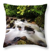 Beautiful Stream In Western Ghats Throw Pillow