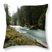 Beautiful White Water Throw Pillow