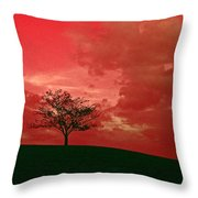 Beauty Stands Against The Terrible Sky Throw Pillow