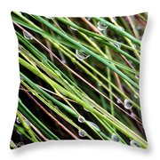 Bedazzled Blades 3 Throw Pillow