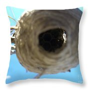 Bee Hive Throw Pillow