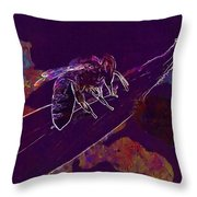 Bee Honey Bee Apis Insect Flower  Throw Pillow