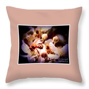 Bee On Apple Blossoms Throw Pillow