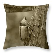 Beetle On A Log Throw Pillow
