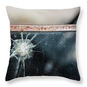Belmont Broken Truck Window 1571 Throw Pillow