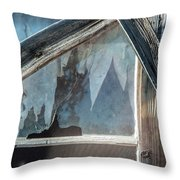 Belmont Window And Screen 1627 Throw Pillow