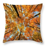 Beneath The Canopy Throw Pillow