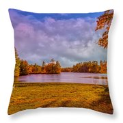Best Seats In Town Throw Pillow
