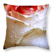 Bicolor Rose Throw Pillow