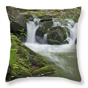 Big Pup Falls 3 Throw Pillow by Michael Peychich