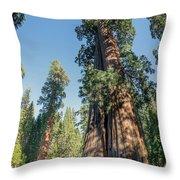 Big Tree Trail - Sequoia National Park - California Throw Pillow