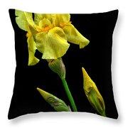 Big Yellow Throw Pillow