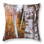 Birch Trees Fall Scenery Throw Pillow