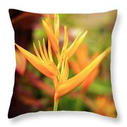 Bird Of Paradise Plant In The Garden. Throw Pillow