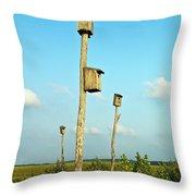 Birdhouses In Salt Marsh. Throw Pillow