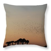Birds In The Sun Throw Pillow