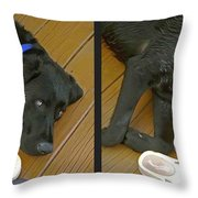 Black Lab - Gently Cross Your Eyes And Focus On The Middle Image Throw Pillow