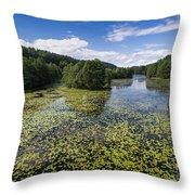 Black River Hancza In Turtul.  Throw Pillow
