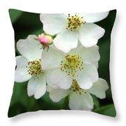 Blackberry Blossoms Throw Pillow