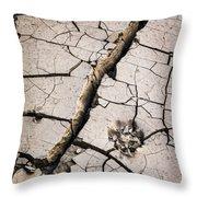 Blair Cracked Mud 1685 Throw Pillow