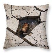 Blair Cracked Mud 1695 Throw Pillow