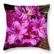 Blooming Azaleas Throw Pillow