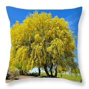 Blooming Palo Verde Throw Pillow