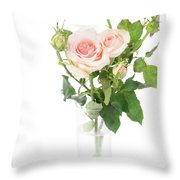 Rose Twigs Throw Pillow