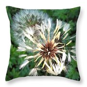 Blown Wishes 2 Throw Pillow