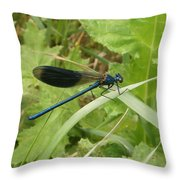 Blue Dragonfly On Leaf Throw Pillow