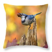 Blue Jay With Acorn Throw Pillow