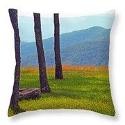 Blue Ridge Mountains - Virginia 2 Throw Pillow
