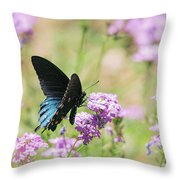 Blue Swallowtail Butterfly  Throw Pillow