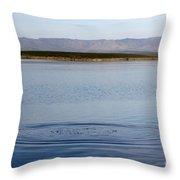 Blue Undulations Throw Pillow