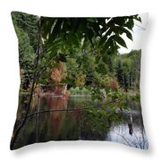 Blueberry Mountain Throw Pillow