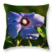 Bluebird Rose Of Sharon Throw Pillow