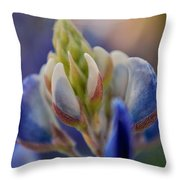 Bluebonnet Throw Pillow