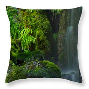 Bluff Falls Throw Pillow