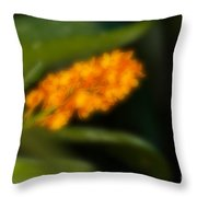 Blurred Seasonal Orchid Flowers With Dark Green Background Throw Pillow