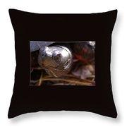 Bog Turtle Throw Pillow