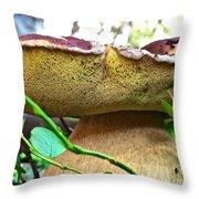 Boletus Edulis Throw Pillow