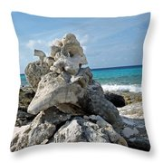 Bonaire Coral And Shells 3 Throw Pillow
