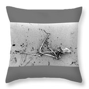 Bones On The Beach  Throw Pillow