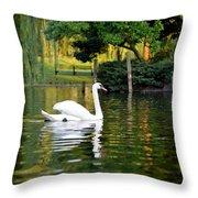 Boston Public Garden Swan Green Reflection Throw Pillow