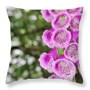 Botanical Gardens 4 Throw Pillow
