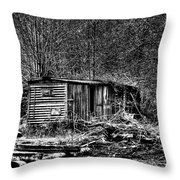 Box Car Throw Pillow